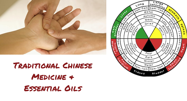 Traditional Chinese Medicine (2).png