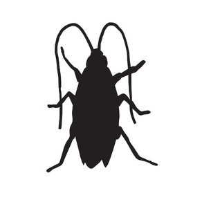 Starting this December, a little cockroach will be roaming the streets of Athens