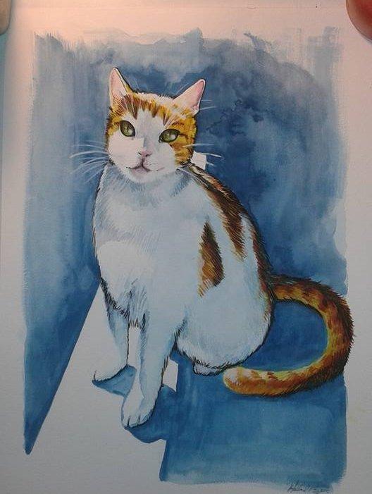 Erins Cat