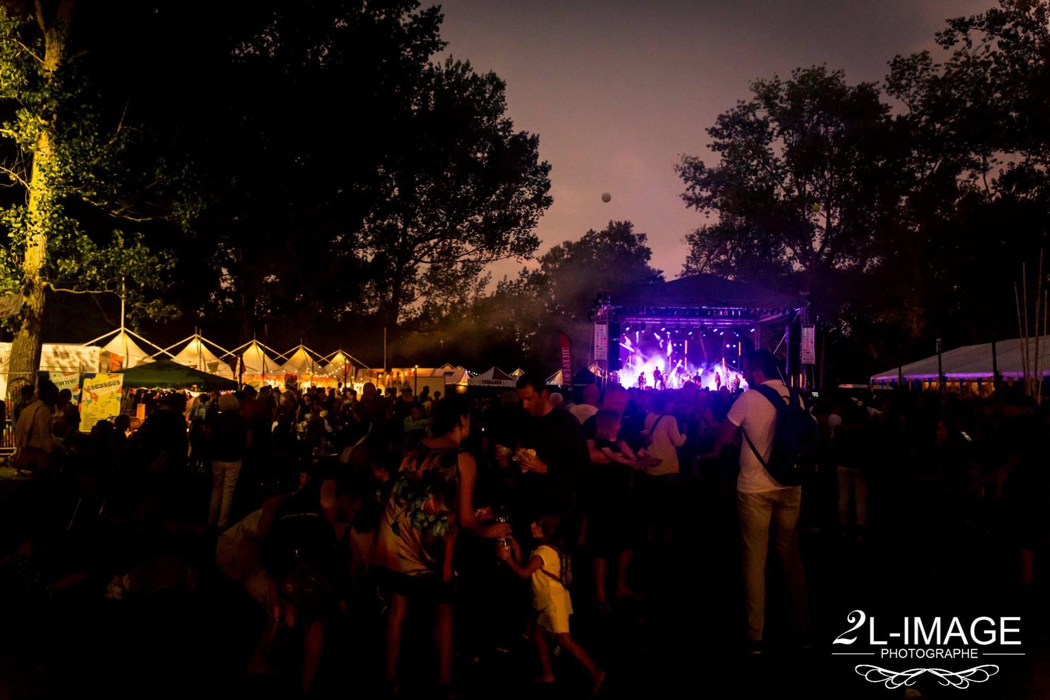 Public festival Toulouse