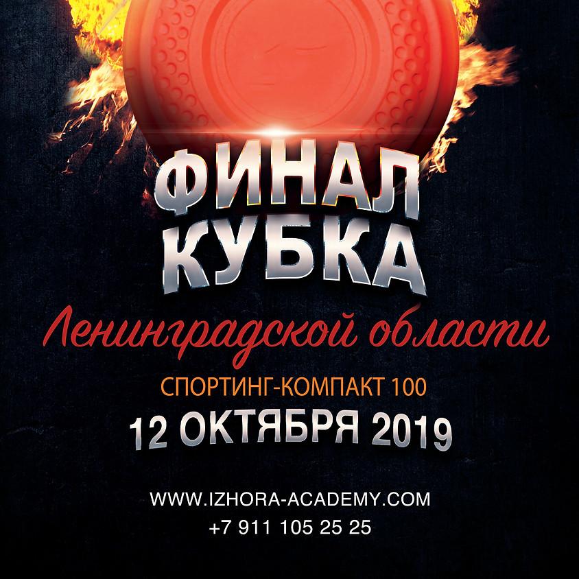 Финал Кубка Ленинградской области 2019
