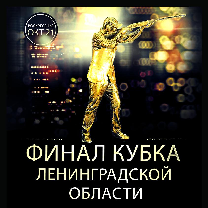 Финал Кубка Ленинградской области 2018