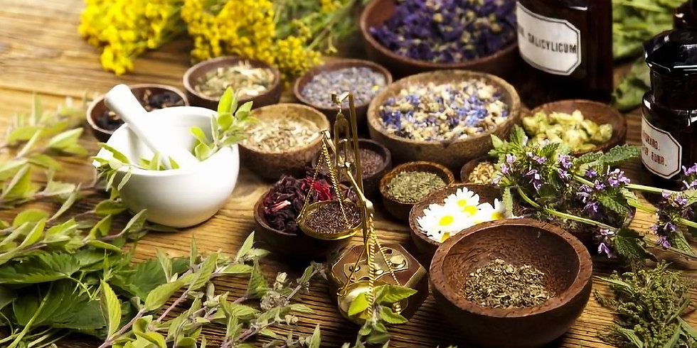 Herbalism (Ages 5-8) 2:15pm-3:15pm | Fridays (1)