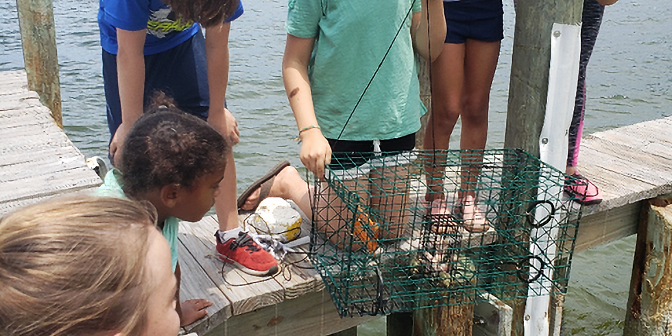 INDIAN RIVER LAGOON WORKSHOPS (AGES 8-15)