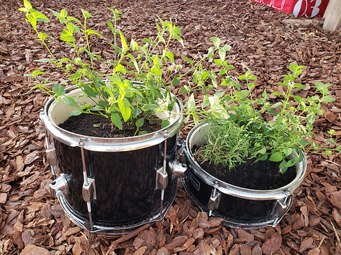 To The Beat Of Your Own Drum Planter- Lantana and Rosemary