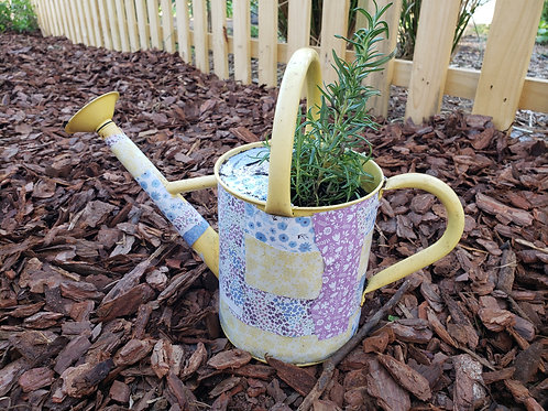 Rosemary Watering Can Planter