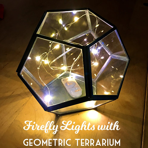 Mason Lights in Geometric Terrarium