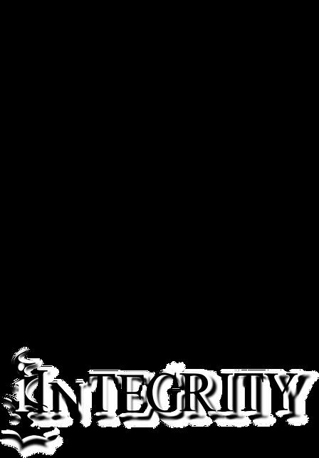 iinTegrity2.0(1).png