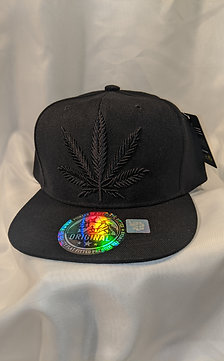 Black Snap Back