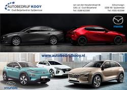 Autobedrijf Kooy