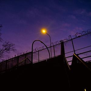 a purple haze.png