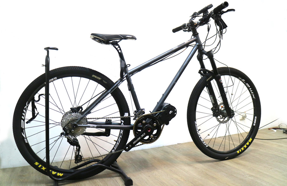 Chain Version on bike
