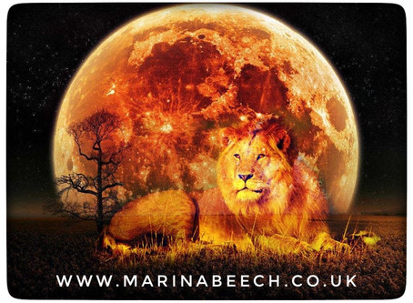 Leo Full Moon - Sunday 9th 07.33 UK Time