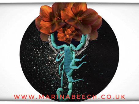 Scorpio New Moon ♏️ Sunday 15th November 2020 - 05:07 UK TIME