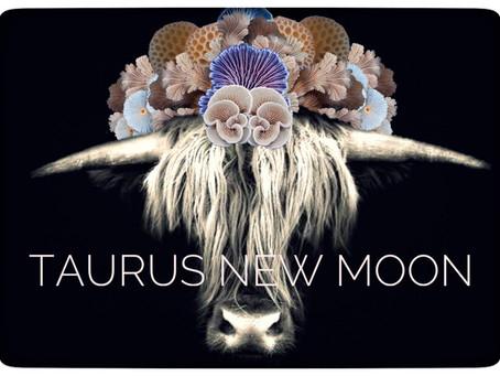 New Moon in Taurus ♉️ 22.04.20 - 2.25 U.K.