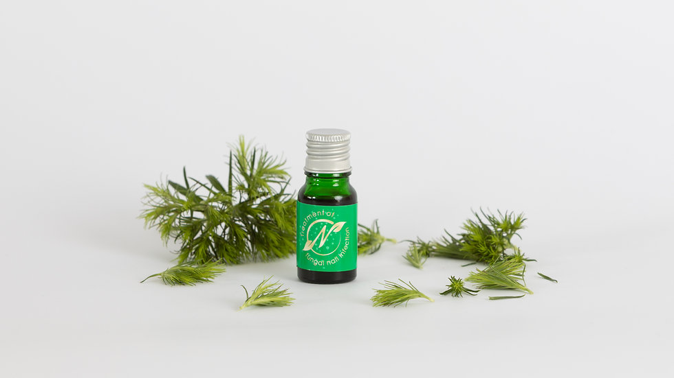 Anti-Fungal Nail Treatment