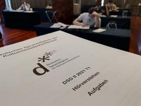 Against all odds: DSD 2020