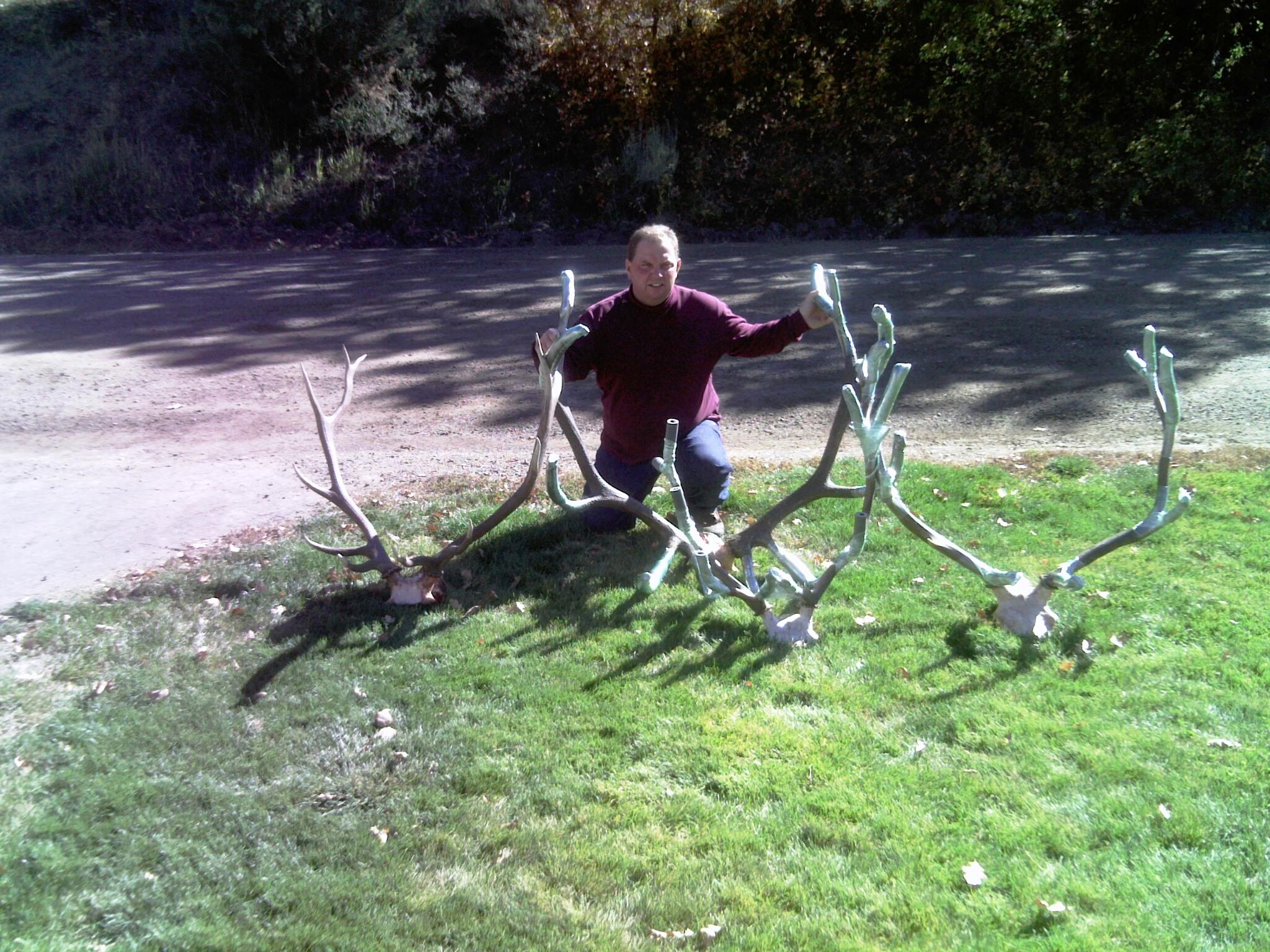 1st elk 2011