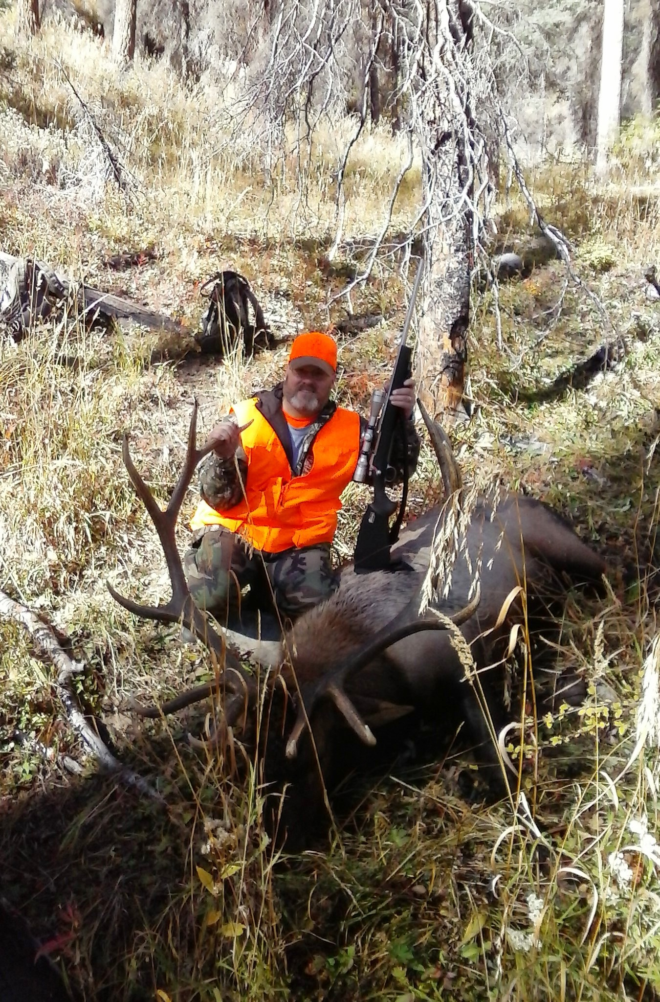 Mike Davie's bull 1st rifle