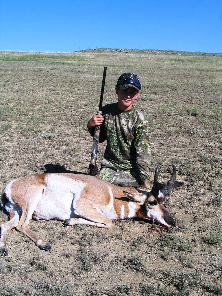 antelope-4-768