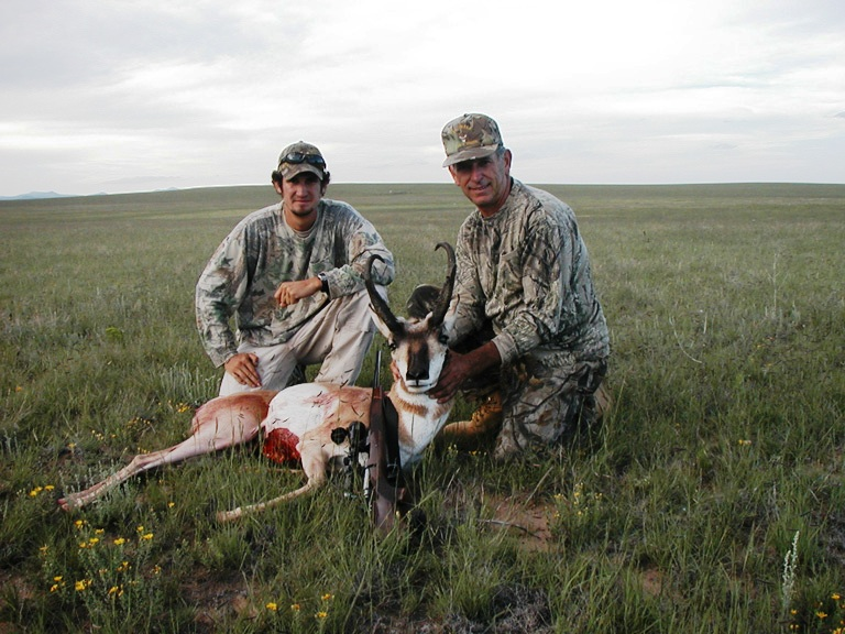 antelope5-768