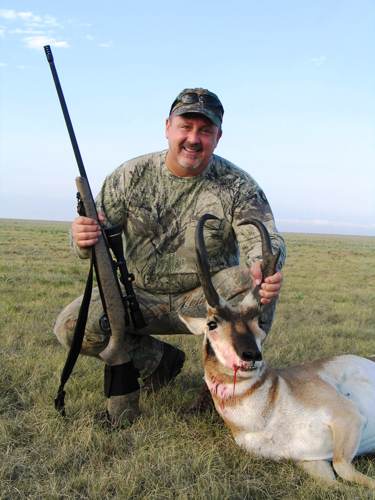antelope-768