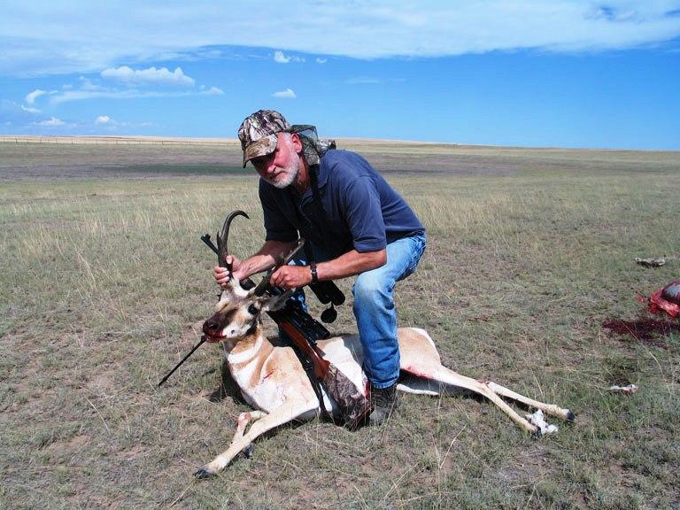 antelope-2-768