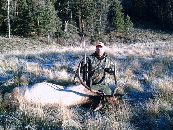 elk-1-600