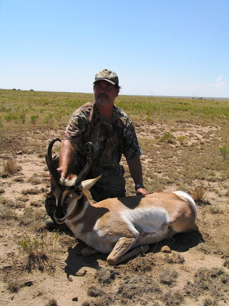 antelope-2-768 (1)