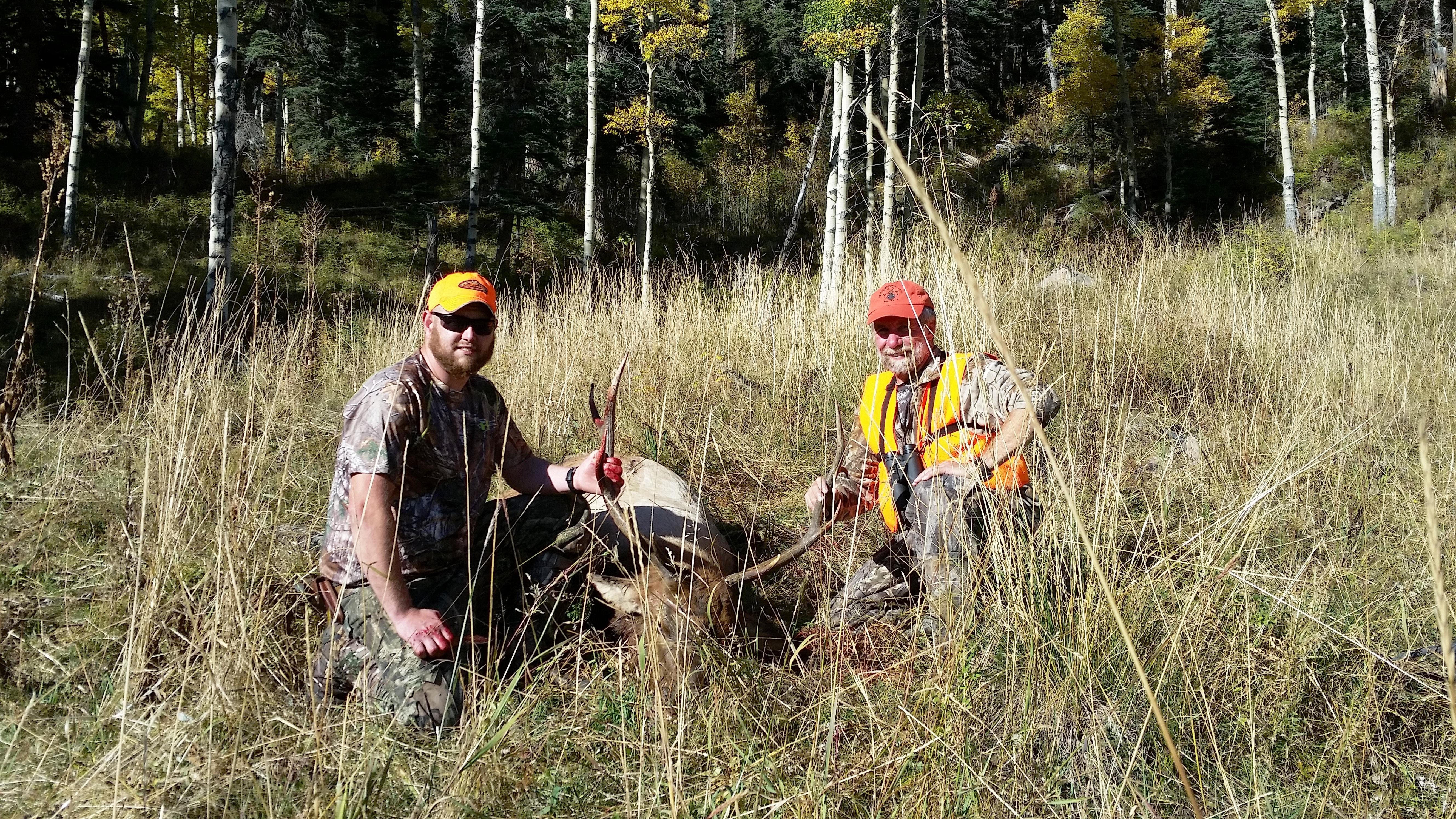 Bob Eggleton's elk
