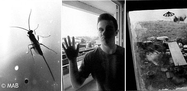 12 La fenêtre série 2.JPG