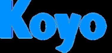koyo-bearings copy.png