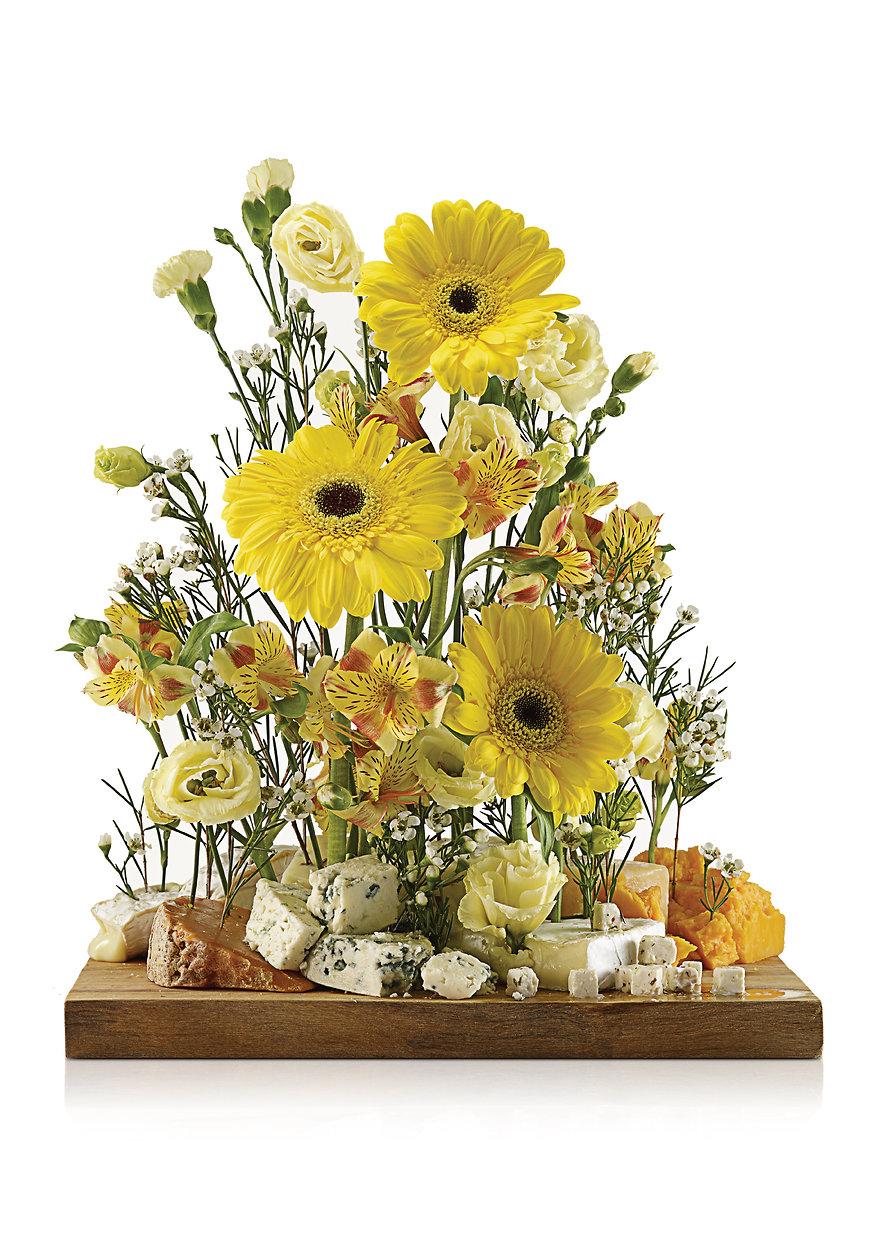 Cheeseflower-02.jpg