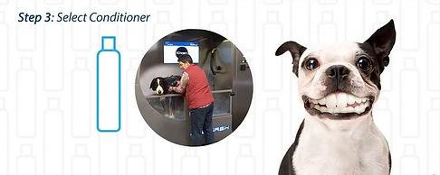 Dog Wash 6.JPG