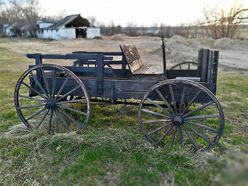 Amish cart.jpg