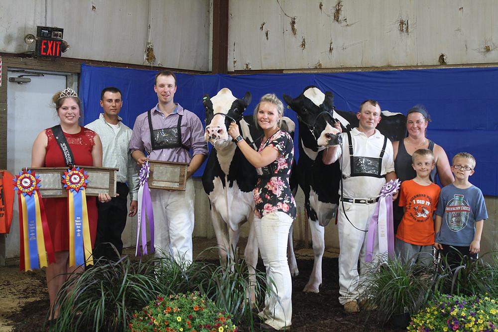 District 1 Holstein Show