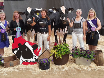 2017 Junior State Show Results