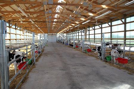 Selz-Pralle Dairy Calf Barn
