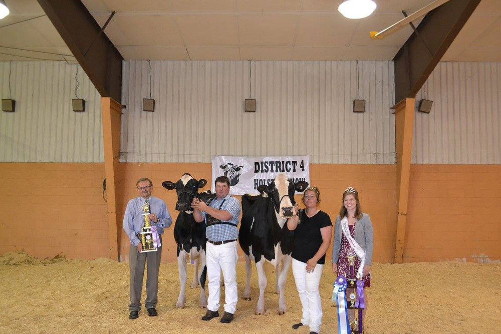 Reserve Grand Champion and Grand Champion of the Open Show