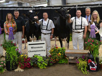 2015 State Show Results