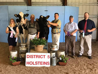 2017 District 5 Show Results