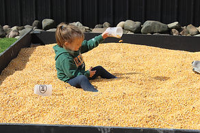 PIcnic corn box.jpg