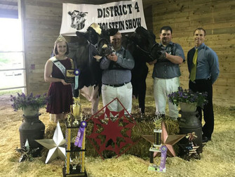 2017 District 4 Show Results