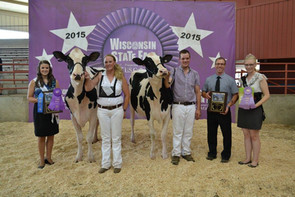 2015 State Fair - Open Results