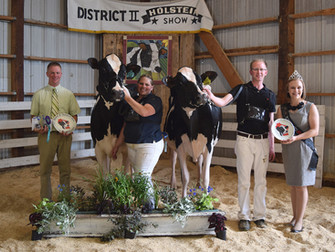 2017 District 2 Show Results