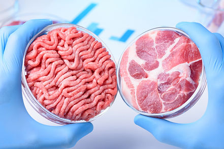 Food of the future without harm to animals and planet.