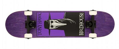 Birdhouse Plague Purple 7.5