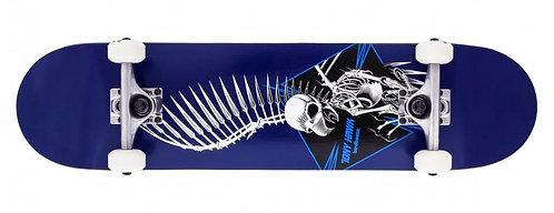 Birdhouse  Full skull 7.5