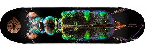 Powell Peralta Beetle 8.25 Deck