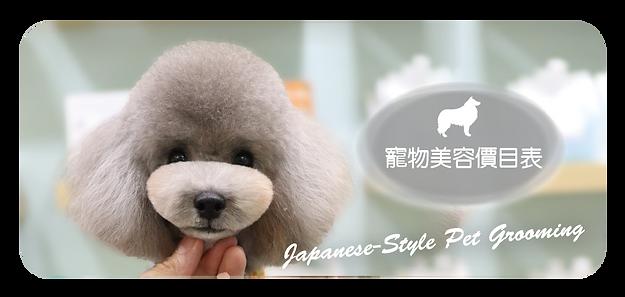 美容傳單 A+ Pet Store-03.png